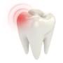 Zahnschmerzen, Zahnweh, Notdienst
